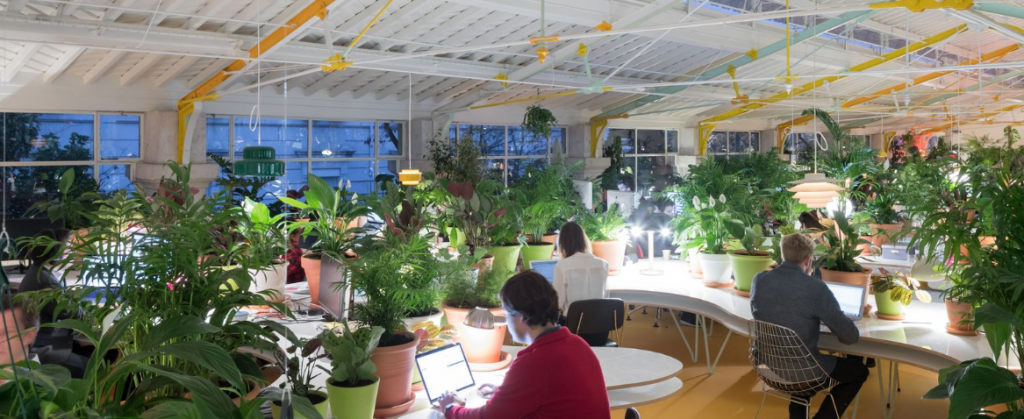 Second Home coworking space in London