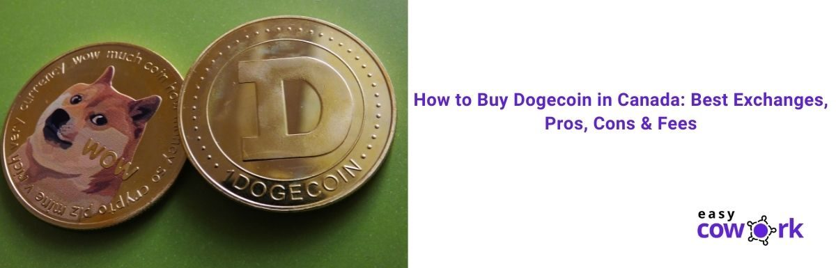 How to Buy Dogecoin in Canada Best Exchanges, Pros, Cons & Fees [2021]